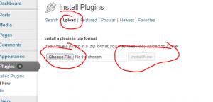 wordpress plug in user addresses