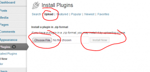 wordpress plug in user addresses