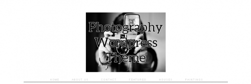 Photography Show Off Theme