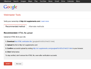 SERP AND INDEXING