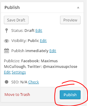 Easy WordPress Instructions on Post Pages and Widgets