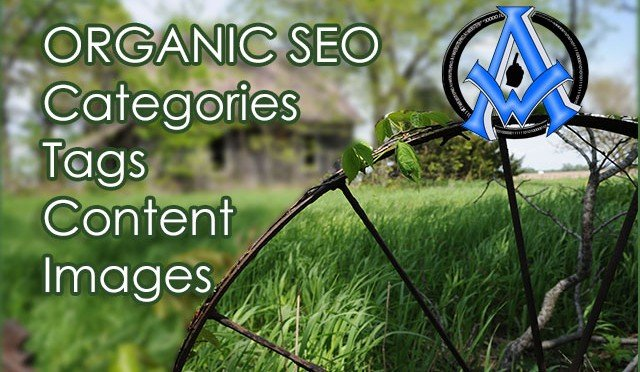 Organic-Search-Engine-Optimization-Techniques-Tutorial-3