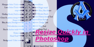 Resize Tools in Adobe Photoshop