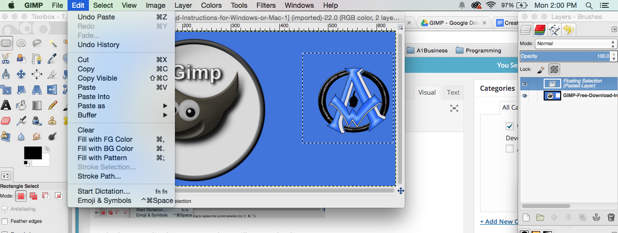 GIMP Pasted Layer