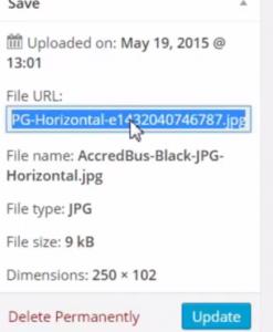 url link changes in wordpress after updating