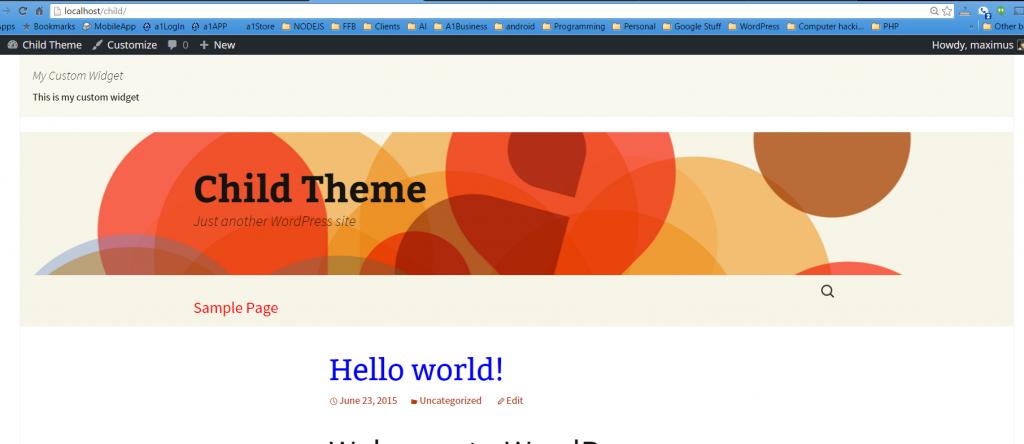 custom widget in header.php file