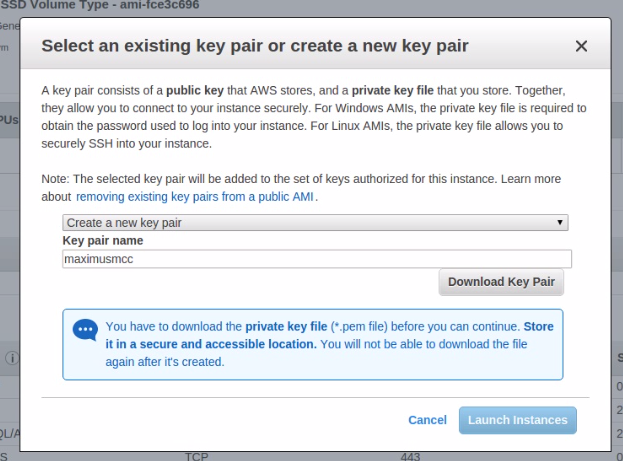 Generate a new Key-pair and download to your computer