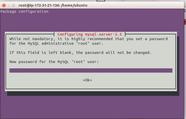 Set Root Password for MySql