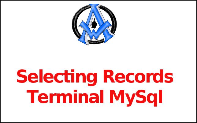 Selecting Records Terminal MySql