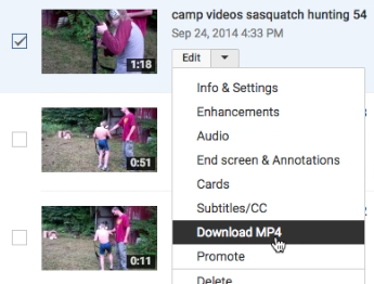 Click check box next to video you want to download from YouTube
