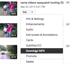 Repeat process to download more videos from your YouTube account