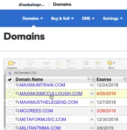 Choose Domain Name To Change DNS
