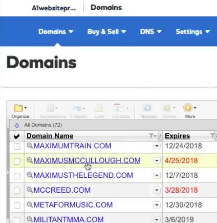 Choose Domain Name To Change DNS
