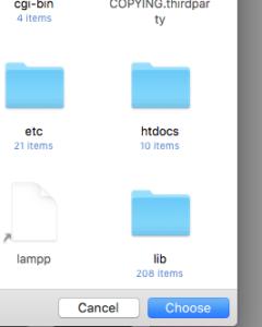 htdocs folder site setup